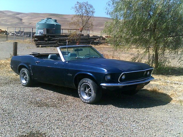 1969 mustang convertible 1969 ford mustang cars for sale. Black Bedroom Furniture Sets. Home Design Ideas